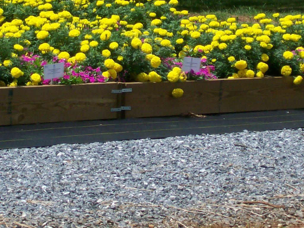 Flower Bed landscaping