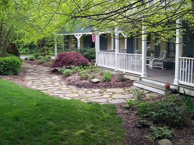 Landscape front yard
